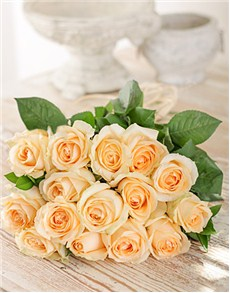 Bouquet of 15 cream roses in cellophane