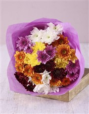 Bouquet of chrysanthemums & filler in cellophane
