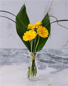 Stepped Yellow Gerbera Arrangement Petite