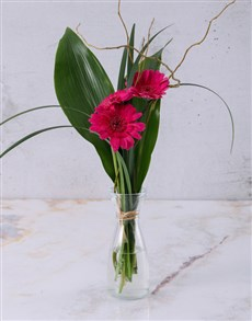 Stepped Pink Gerbera Arrangement Petite
