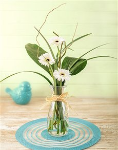 Stepped White Gerbera Arrangement Petite