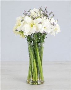 Cut Amaryllis in Small Clear Flair Vase!