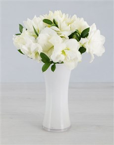 Cut Amaryllis in White Flair Vase!