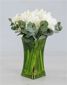 Cut Amaryllis in Green Square Vase!