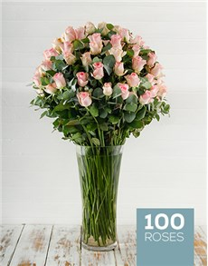 100 Pink Roses in a Tall Glass Vase