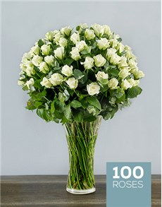 100 White Roses in a Tall Glass Vase