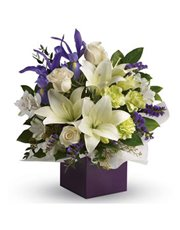 Gorgeous white lilies and delicate blue iris dance