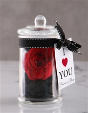 Silver Necklace And Iluba Rose Gift Set