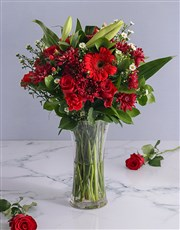 A beautiful display of vivid red flowers like gerb