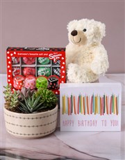 Cacti and Succulents in Love Leaf Bowl