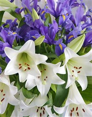 St Joseph lilies and purple irises, displayed in a