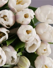 White Tulips in Craft Paper