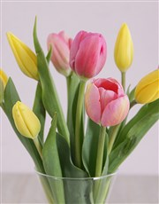 Pink and Yellow Tulips in Vase
