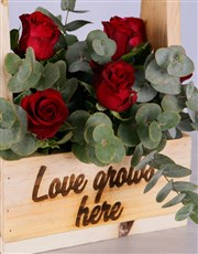 Red Roses in Wooden Holder
