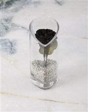 Precious Preserved Rose Glass