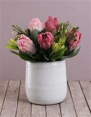 Silk Queen Proteas in White Ceramic