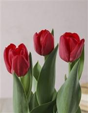 Red Tulips in Flower Wicker Basket