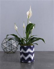 Peace Lily in Delf Blue Waterproof Fabric Pot