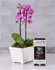 Pink Orchid in Textured Ceramic Planter
