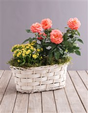 Orange Rose and Yellow Kalanchoe Basket
