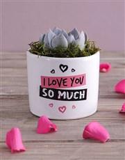 Love You Succulent