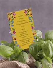 Basil Plant with Special Recipe