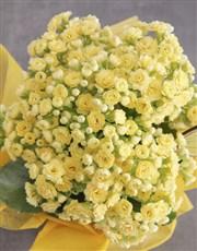 Yellow Kalanchoe Gift Of Gratitude