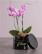 Endless Opulence Orchid Hat Box