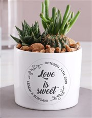 Personalised Love Is Sweet Succulent Mix