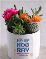 Personalised Birthday Succulent Mix