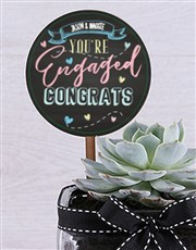 Personalised Congrats On Engagement Succulent