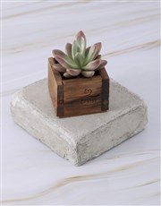 Personalised Special Day Succulent