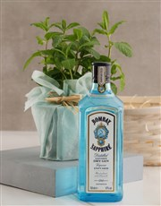 Mint and Gin Orchid Birthday Hamper