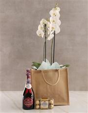 Totes Amazing Orchid Gratitude Hamper