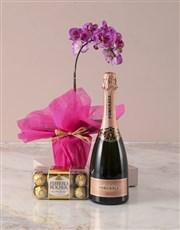Pink Midi Orchid Hamper