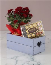 Chrysanthemum and Chocolates in Heart Crate