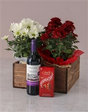 Red and White Chrysanthemum Gift Hamper