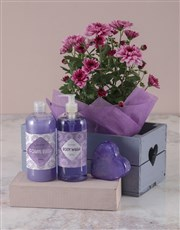 Purple Chrysanthemum Bath and Body Hamper