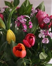 Tremendous Tulips Arrangement
