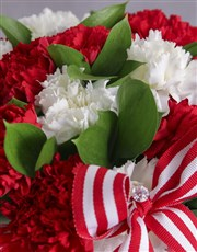 Red and White Carnations in a Stripy Pot