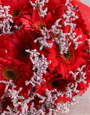 Brillaint Red Gerbera Bouquet