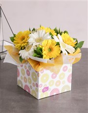 Sunny Box of Gerbera Daisies