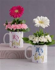 Its a Boy Daisy in a Mug