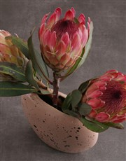 Proteas in Oval Moon Vase