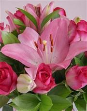 Cerise Floral Horns in a Vase
