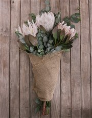 King Protea Trio Wrapped in Hessian