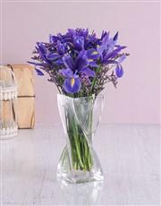 Glass Twist Iris Arrangement
