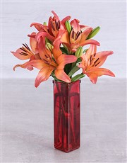 Sunset lilies in a Red Straight Vase