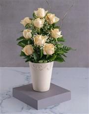 Feel Better Cream Rose Arrangement