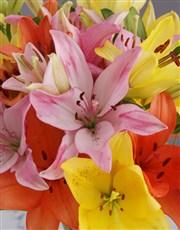 Lily Garden Evergarden
